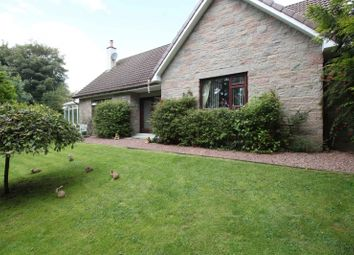 Thumbnail 4 bed detached house for sale in Naemoor Road, Crook Of Devon, Kinross