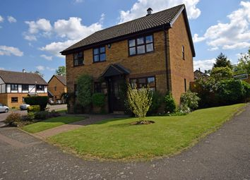 Thumbnail 4 bed detached house for sale in Evergreen Close, Hempstead