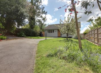 Thumbnail 2 bed detached bungalow to rent in Church Hill, Hempstead, Saffron Walden