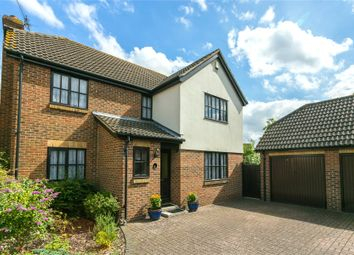 Thumbnail 4 bedroom detached house for sale in Great Godfreys, Writtle, Chelmsford, Essex