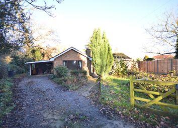 Thumbnail 3 bedroom detached bungalow to rent in Steggs Lane, Westfield, Dereham