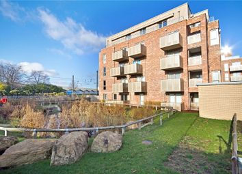 3 bed flat to rent in Scholars Court, Harrison Drive, Cambridge CB2