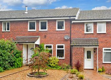Thumbnail 4 bed terraced house for sale in Crundles, Petersfield, Hampshire