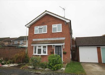 Thumbnail 3 bed detached house for sale in Meadow Close, Trimley St. Martin, Felixstowe