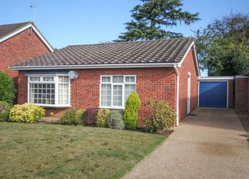 Thumbnail Detached bungalow for sale in Northwold, Ely