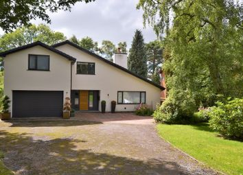 Thumbnail 4 bed detached house for sale in Black Firs Lane, Somerford, Congleton