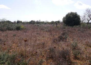 Thumbnail Land for sale in Santanyi, Balearic Islands, Spain