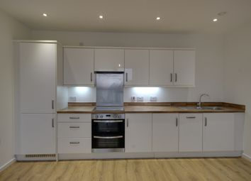 Thumbnail 2 bed flat to rent in Elizabeth Place, Clyde Road, London