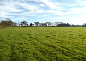 Thumbnail Equestrian property for sale in Offwell, Honiton, Devon