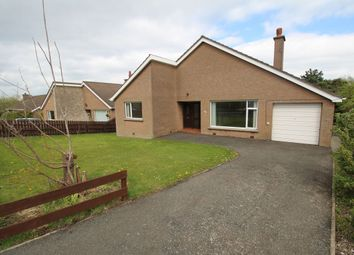 Thumbnail 3 bed bungalow for sale in Ballymacormick Drive, Bangor