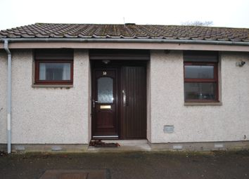 Thumbnail 1 bedroom bungalow to rent in Bloomfield Road, Arbroath, Angus