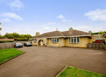 Thumbnail 4 bed bungalow to rent in Frog Grove Lane, Wood Street Village