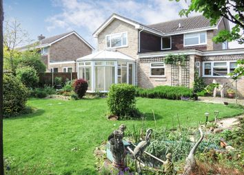 Thumbnail 3 bed detached house for sale in Hall Hills, Roydon, Diss