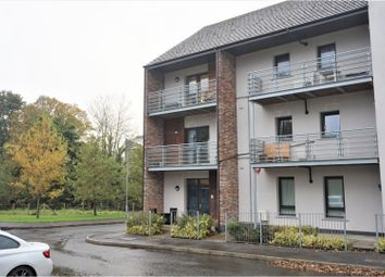 Thumbnail 2 bed flat for sale in Woodbrook Green, Lisburn