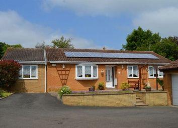 Thumbnail 3 bedroom detached bungalow for sale in Berrydale, Berrydale, Northampton