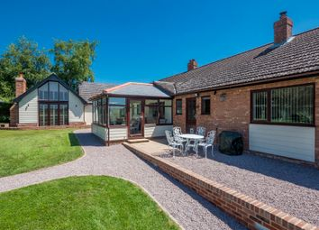 Thumbnail 4 bed detached bungalow for sale in Lindsey, Ipswich