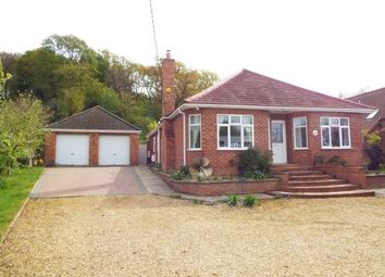 Thumbnail 5 bedroom bungalow for sale in Dersingham, King's Lynn, Norfolk