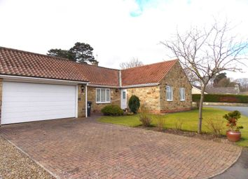 Thumbnail 3 bed detached bungalow for sale in Cumberland Gardens, Middleton Tyas, Richmond