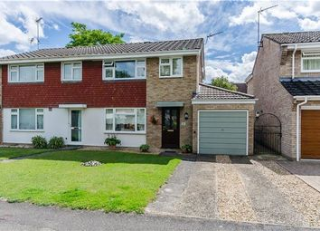Thumbnail 3 bed semi-detached house for sale in Doggett Road, Cherry Hinton, Cambridge
