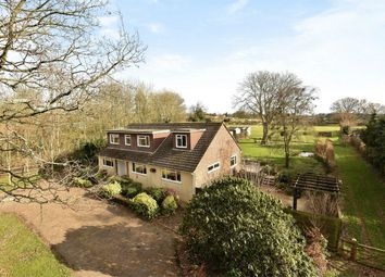 Thumbnail 6 bedroom detached house for sale in Four Marks, Alton, Hampshire