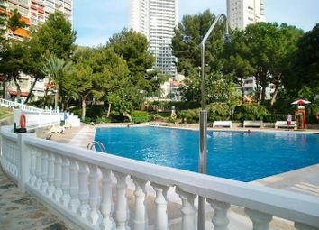 Thumbnail Studio for sale in Studio Apartment With Pool, Tennis And Parking, Rincon De Loix, Benidorm