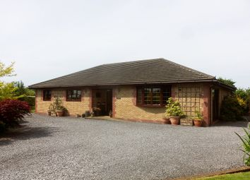 Thumbnail 3 bed detached bungalow for sale in Llanddarog Road, Capel Dewi, Carmarthen, Carmarthenshire.
