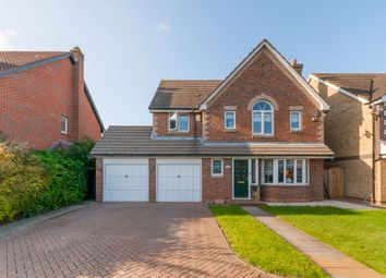 Thumbnail 4 bed detached house to rent in Pulham Avenue, Broxbourne