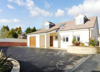 Thumbnail 4 bed detached house for sale in Willow Close, Frome
