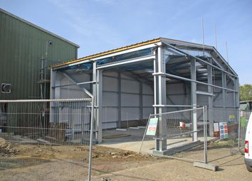 Thumbnail Light industrial to let in Unit 17 Squires Farm Industrial Estate, Squires Lane, Palehouse Common