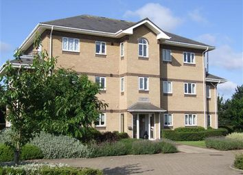 Thumbnail 2 bed flat to rent in St Martins Court, Hartree Way, Grange Farm, Kesgrave, Ipswich