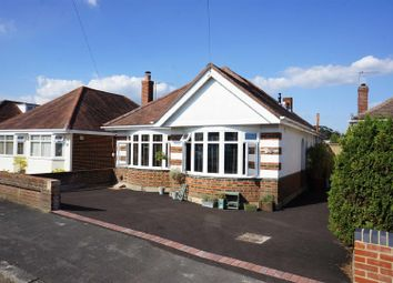 Thumbnail 3 bed detached bungalow to rent in Newmorton Road, Muscliff, Bournemouth