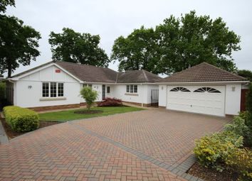 Thumbnail 3 bed detached bungalow for sale in Lake Road, Verwood