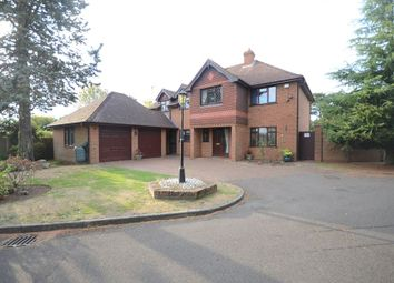 Thumbnail 4 bed detached house to rent in The Pines, Twyford, Reading