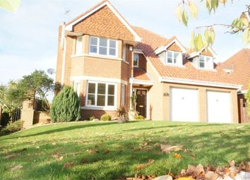Thumbnail 4 bed detached house to rent in Monkton Rise, Guisborough