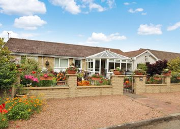Thumbnail 4 bed bungalow for sale in Bankton Park, Kingskettle