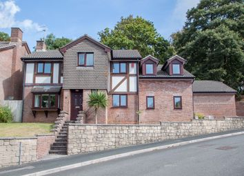 Thumbnail 5 bedroom detached house for sale in Lopwell Close, Plymouth