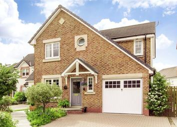 Thumbnail 4 bed detached house for sale in Holly Grove, Menstrie