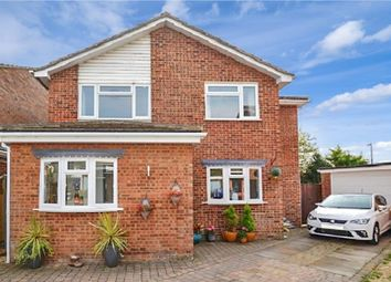 Thumbnail 4 bed detached house for sale in Snells Mead, Buntingford