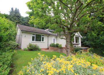 Thumbnail 2 bed detached bungalow to rent in Cintra Road, Norwich
