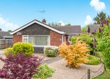Thumbnail 3 bed detached bungalow to rent in Covey Way, Lakenheath, Brandon