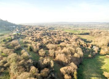 Thumbnail Land for sale in Semley, Shaftesbury, Wiltshire