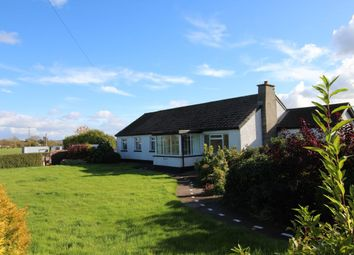 Thumbnail 4 bedroom bungalow for sale in Moira Road, Lisburn
