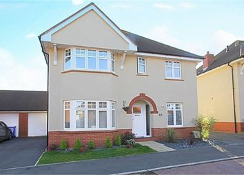 Thumbnail 4 bed detached house for sale in Sturgess Way, Roade, Northampton