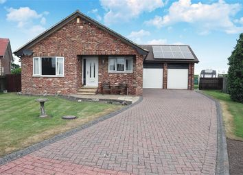 Thumbnail 3 bed detached bungalow for sale in Islestone Drive, Seahouses, Northumberland