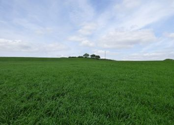 Thumbnail Land for sale in Land At Troway, Marsh Lane, Sheffield