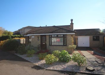 Thumbnail 2 bed detached bungalow for sale in Rosebank Place, Hamilton