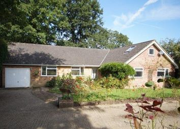 Thumbnail 3 bed detached bungalow for sale in Chapel Gardens, Lindford