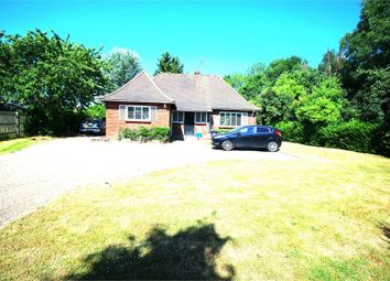 Thumbnail 2 bedroom detached bungalow to rent in Sewardstone Road, Nr Waltham Abbey, London