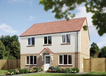 "Thumbnail 4 bedroom detached house for sale in ""The Ettrick"" at Lignieres Way, Dunbar"