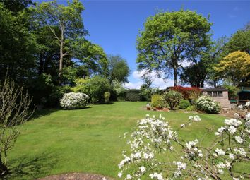 Thumbnail 5 bed detached house for sale in Wellhouse Road, Beech, Alton, Hampshire